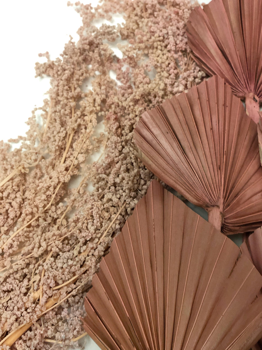 Dried Palm Spear - Antique Pink Set 5