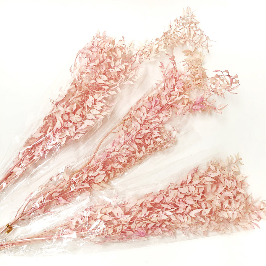 Preserved Ruscus Dried Flowers - Peach/Pink Bunch