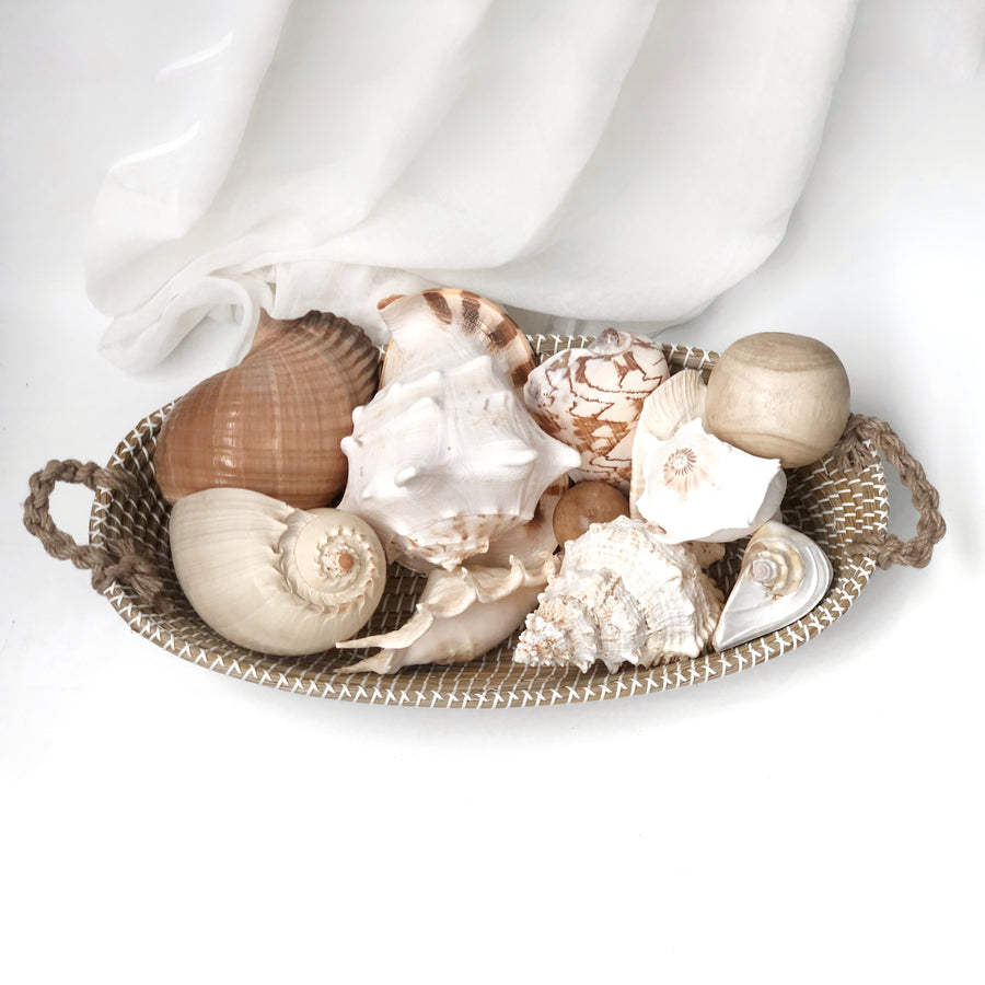 Feature Centrepiece: Large Shell Bundle with 70 CM Woven Basket (13 Piece Set)