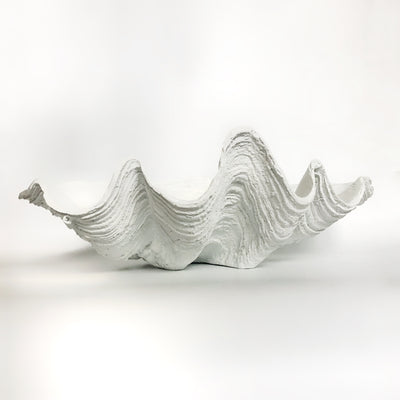 Resin Faux Giant Clamshell White 69 CM