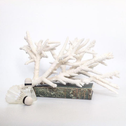 Real Staghorn Coral 45CM