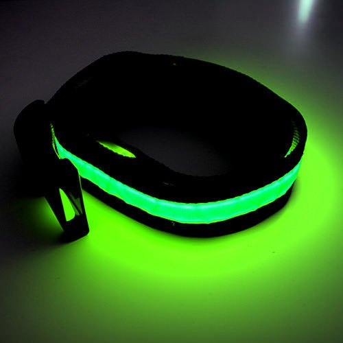 HALO LED Belt - Green