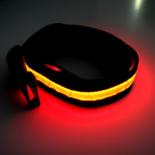 HALO LED Belt - Red
