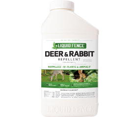 deer & Rabbit con 32oz