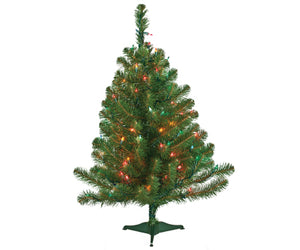 2ft norway spruce 50 multi