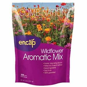 wf/aromatic mix 2lb