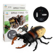 Load image into Gallery viewer, Infrared RC Insect Toys
