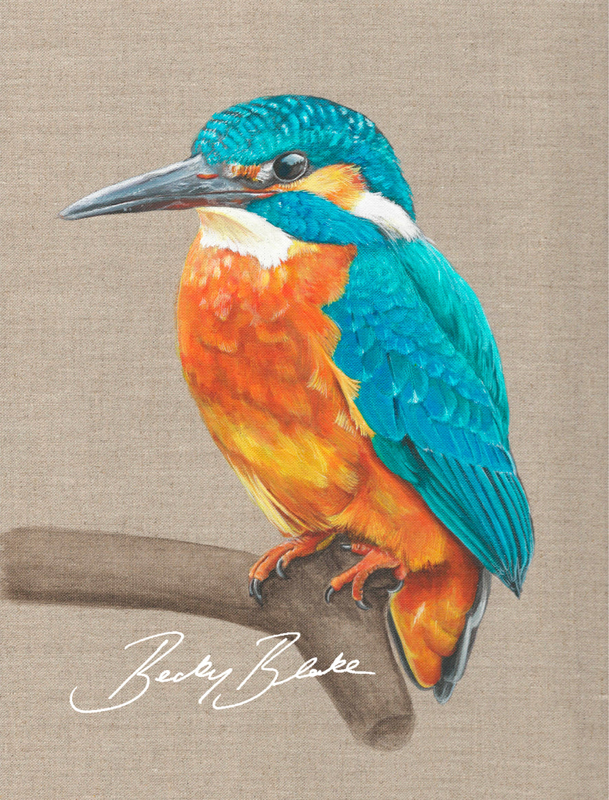 James The Kingfisher