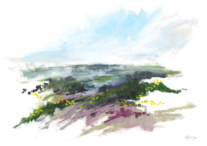 Studland Heath Series I