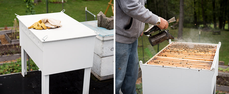 modern beehive made of recycled hdpe