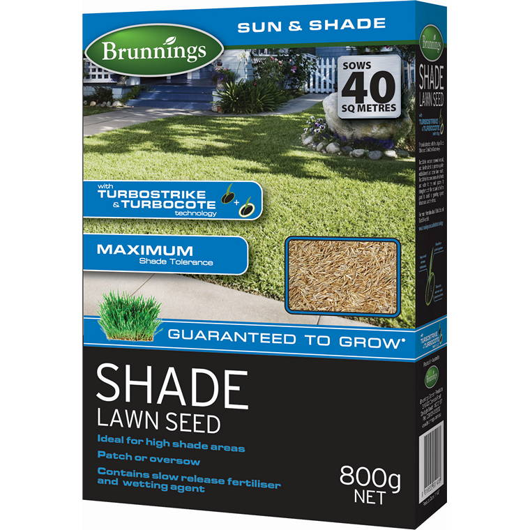 Shade Lawn Seed, 800g