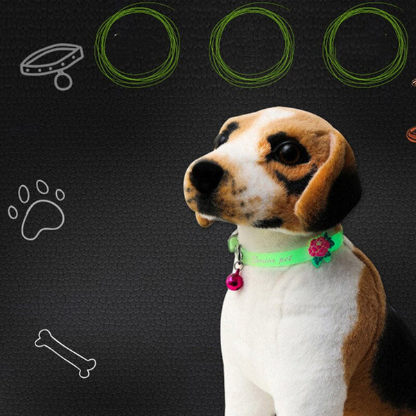 Pet Glowing Collars with Bell Pets Collars My Fond Pets