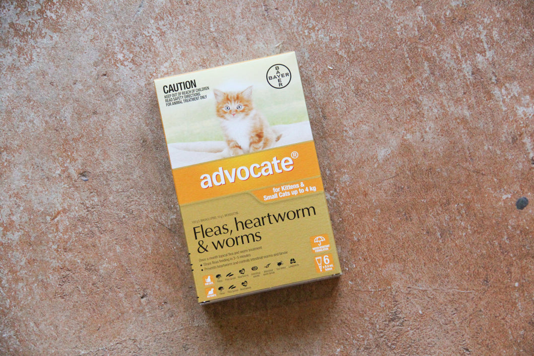 ADVOCATE CAT SMALL ORANGE 0-4KG