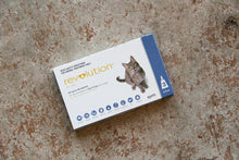 Load image into Gallery viewer, REVOLUTION CAT 2.6-7.5KG BLUE