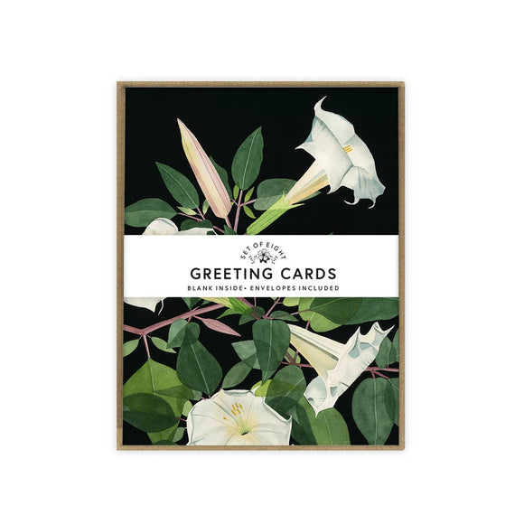 May We Fly Boxed Cards - Moonflowers