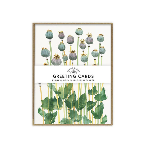 May We Fly boxed set of cards - Poppy Pods