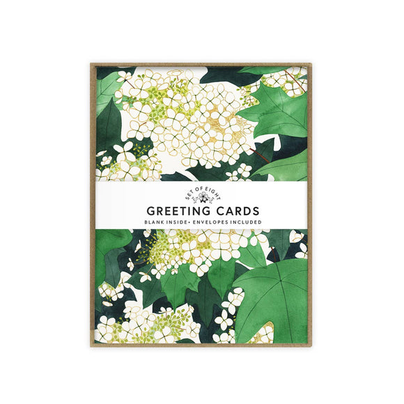 May We Fly boxed set of cards - Oakleaf Hydrangea