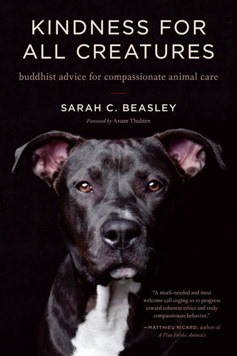 Kindness for All Creatures: Buddhist Advice for Compassionate Animal Care