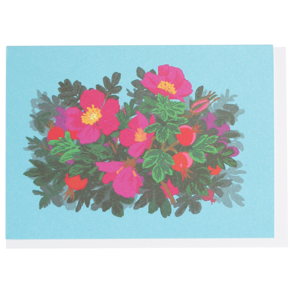 Smudge Ink Boxed Notecards - Beach Roses
