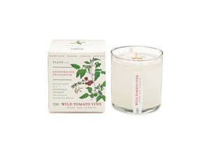 Kobo Plant the Box Collection Candle - Wild Tomato Vine
