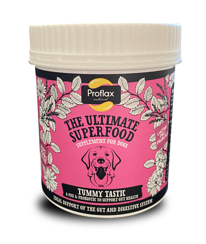 Proflax - Tummy Tastic 350g - Food for dogs, cats and other pets online | Northampton Raw Dog Food!