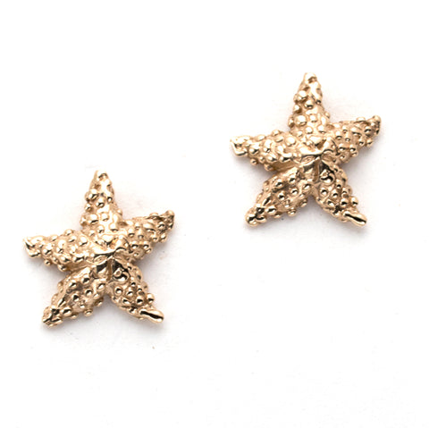 Shimmering 14k Gold Starfish Earrings