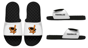 Warrenville Cyclones iSlideUSA Slides