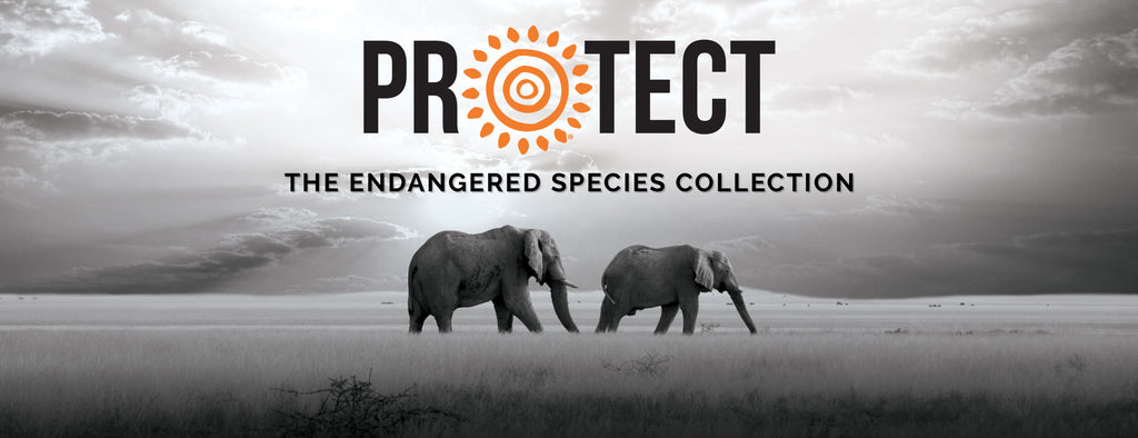 Protect: An Endangered Species Collection by The Mountain