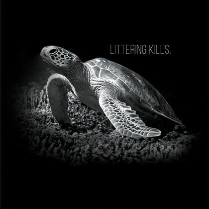 Protect Sea Turtle Conservancy