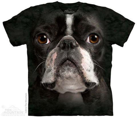 3367 Boston Terrier Face
