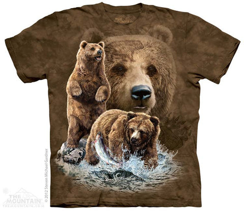 3482 Find 10 Brown Bears