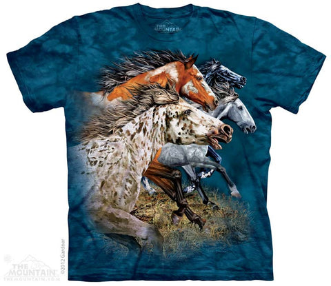3538 Find 13 Horses