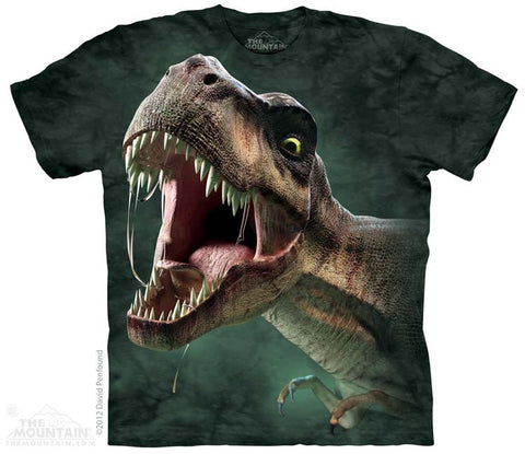 3567 T-Rex Roar Youth T-Shirt