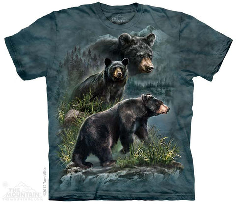 3590 Three Black Bears