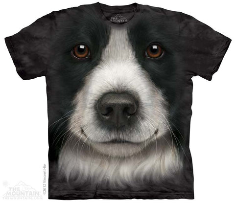 3606 Border Collie Face