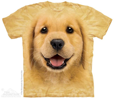 3743 Golden Retriever Puppy