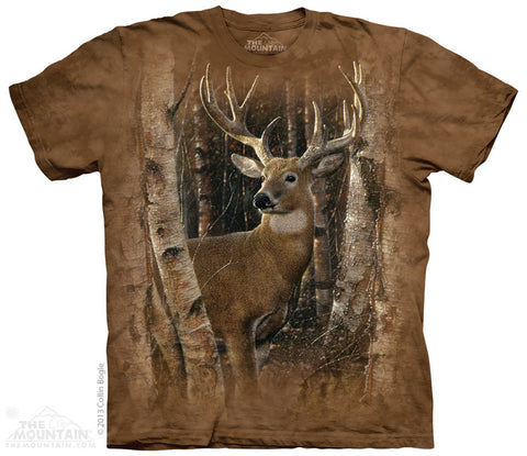 4002 Birchwood Buck