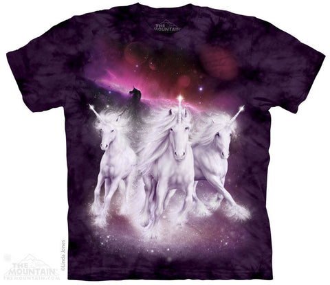 4119 Cosmic Unicorns
