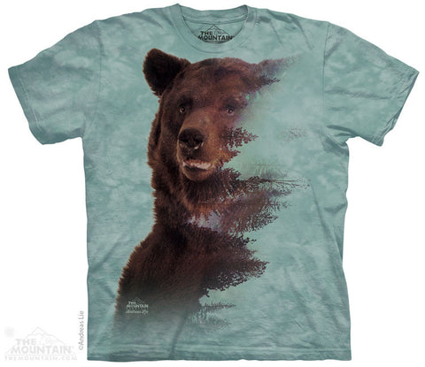 4293 BROWN BEAR FOREST