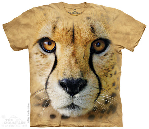 7040 Big Face Cheetah