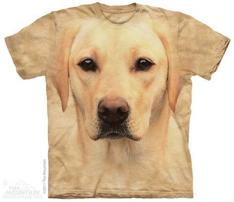 8146 Yellow Lab Portrait