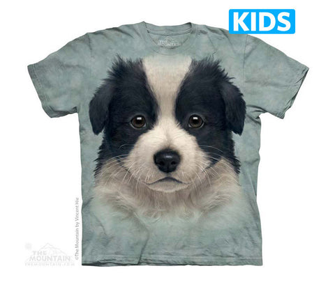 3782 Border Collie Puppy Youth T-Shirt