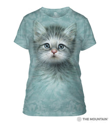 283465 Blue Eyed Kitten Ladies Tee