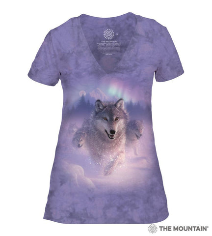 415842 Northern Lights Women's Tri-Blend V-Neck T-Shirt