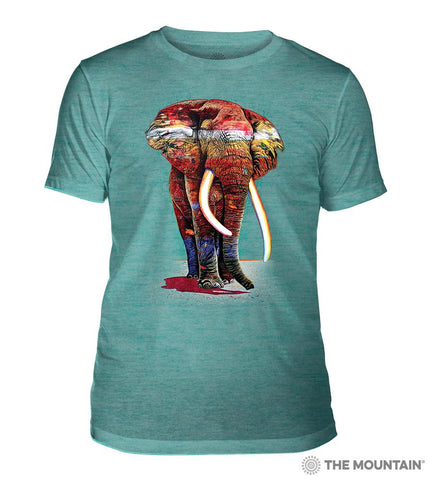 6322 Painted Elephant Teal Triblend T-Shirt