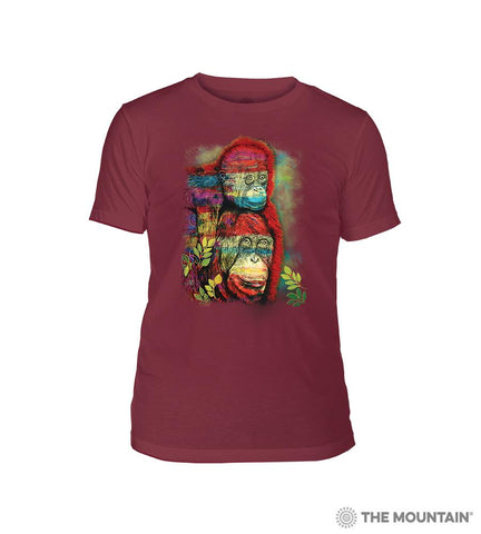 6494 Painted Primates - Red Triblend T-Shirt