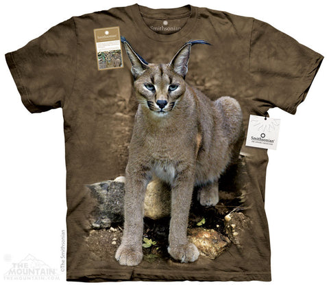 Print to Order - Caracal