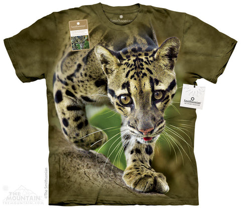 Print to Order - Prowling Clouded Leopard