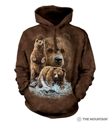 723482 Find 10 Brown Bears Hoodie
