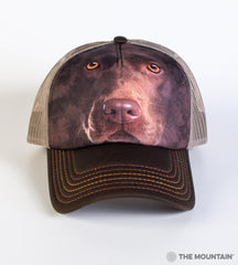 3550 Chocolate Lab Face Trucker Hat